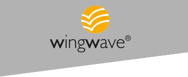 Wing Wave Coaching